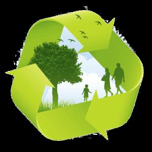 Экологическое сопровождение